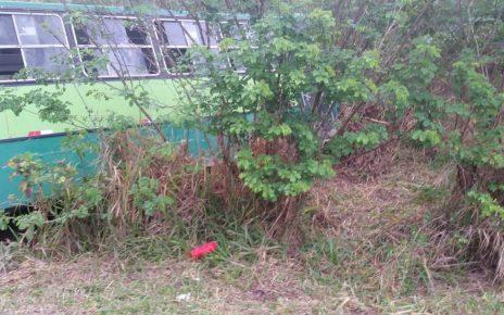 Duas pessoas morreram na manhã de hoje (17) em um grave acidente envolvendo um ônibus e um carro de passeio na BR-101 Norte, em Pedro Canário, no Extremo Norte Capixaba e há 263 KM da Capital Vitória. radargeral.com site noticias de linhares es