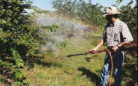 O uso de agrotóxicos é uma prática comum e geralmente é utilizado para proteger o plantio de pragas, porém se utilizados em excesso e de maneira inadequada, a substância pode causar graves danos à saúde do consumidor e dos produtores rurais.