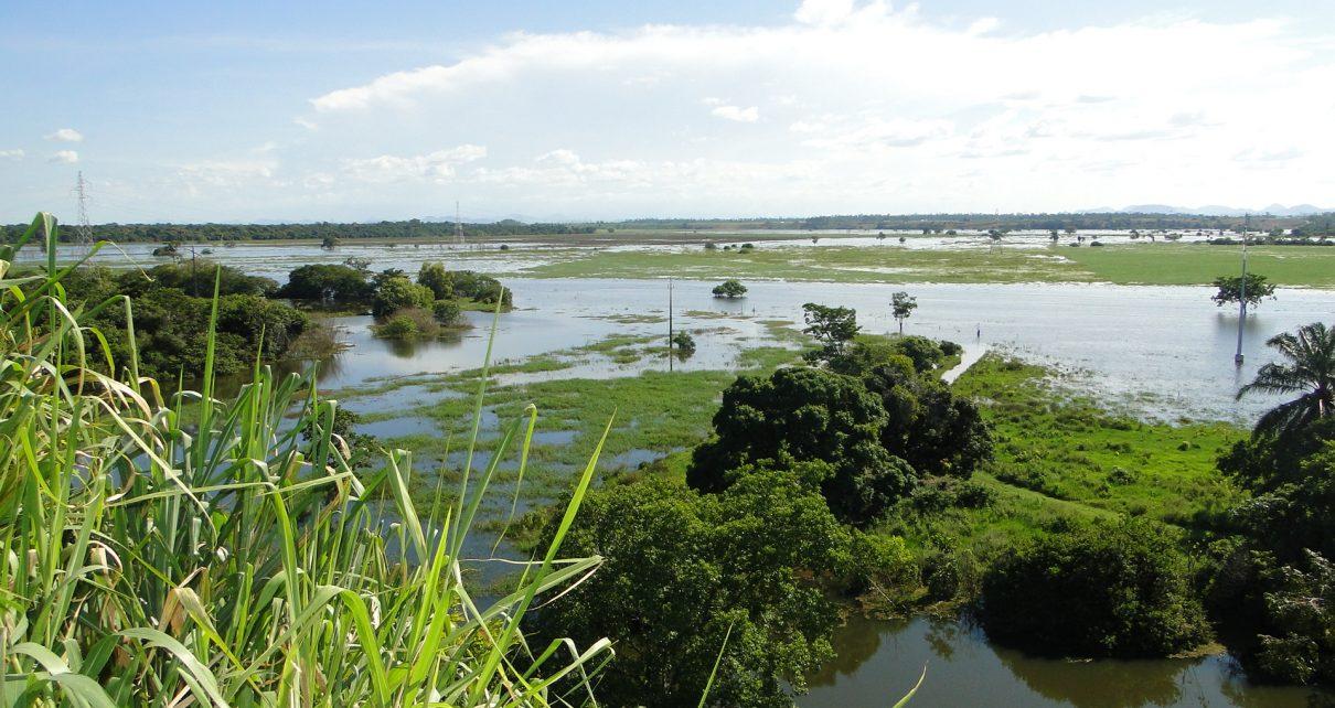 produtores rurais afiram mque samarco ignora prejuízos lema